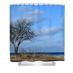 Shower Curtain featuring the photograph Bare Single Tree by Kennerth and Birgitta Kullman