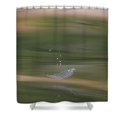 Barely There  Shower Curtain by Cathie Douglas