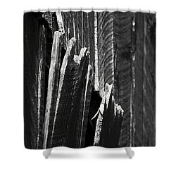 Barn Boards Black And White Shower Curtain by Rebecca Sherman