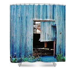 Shower Curtain featuring the photograph Barn Door... Monroe Co. Michigan by Daniel Thompson