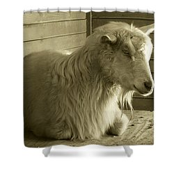 Barn Life Shower Curtain