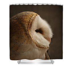 Barn Owl 3 Shower Curtain