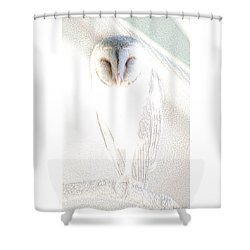 Shower Curtain featuring the photograph Barn Owl by Holly Kempe