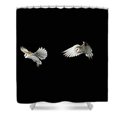 Barn Owl In Flight Shower Curtain by Stephen Dalton