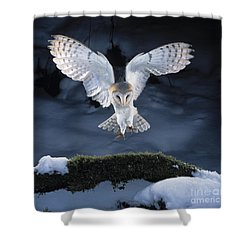 Barn Owl Landing Shower Curtain