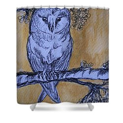 Shower Curtain featuring the painting Barn Owl by Teresa White