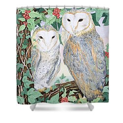 Barn Owls Shower Curtain by Suzanne Bailey