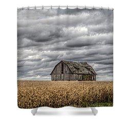 Barn Weathered Shower Curtain