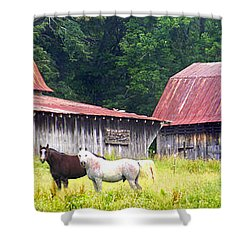 Barns And Horses Near Mills River Nc Shower Curtain