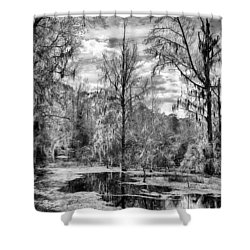 Shower Curtain featuring the photograph Barr Hammock Preserve  by Howard Salmon