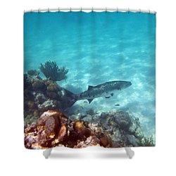 Shower Curtain featuring the photograph Barracuda by Eti Reid