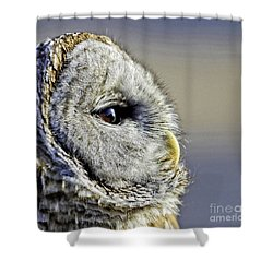 Barred None Shower Curtain