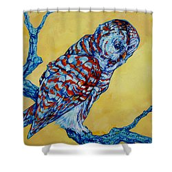 Barred Owl Shower Curtain by Derrick Higgins