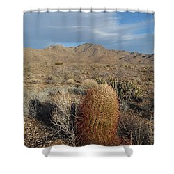 Barrel Cactus In Winter Shower Curtain