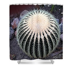Shower Curtain featuring the photograph Barrel Cactus by Luther Fine Art