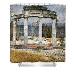 Shower Curtain featuring the digital art Barren Shoreline by Liane Wright