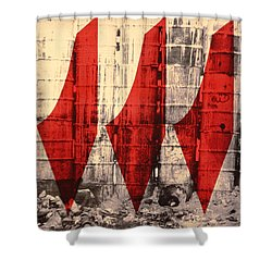 Barriers To Statehood, 1992 Screen Print On Canvas Shower Curtain