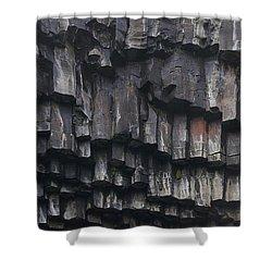basaltic columns of Svartifoss Iceland Shower Curtain