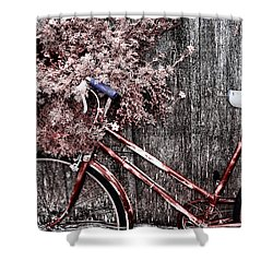 Basket Full Shower Curtain by Mark Kiver