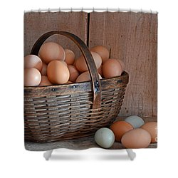 Basket Full Of Eggs Shower Curtain by Mary Carol Story