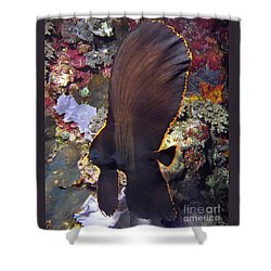Bat Fish Shower Curtain by Sergey Lukashin