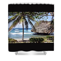 Shower Curtain featuring the photograph Bathsheba No11 by PJ Boylan
