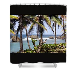 Shower Curtain featuring the photograph Bathsheba No7 by PJ Boylan
