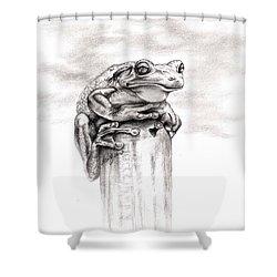 Batting Coach Shower Curtain