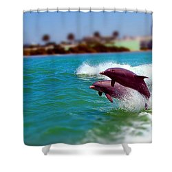 Bay Dolphins Shower Curtain