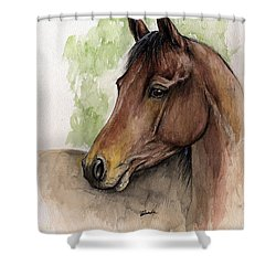 Bay Horse Portrait Watercolor Painting 02 2013 A Shower Curtain by Angel  Tarantella