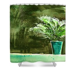 Bay Window Plant Shower Curtain by Anil Nene