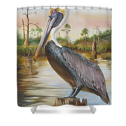 Bayou Coco Point Pelican Shower Curtain