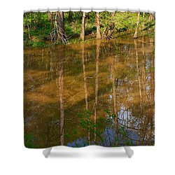 Bayou Reflections Shower Curtain