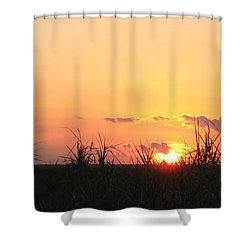Shower Curtain featuring the photograph Bayou Sunset by John Glass