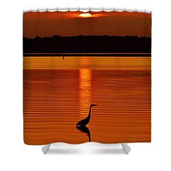 Bayside Ripples - A Heron Takes An Evening Stroll As The Sun Sets Behind The Clouds On The Bay Shower Curtain