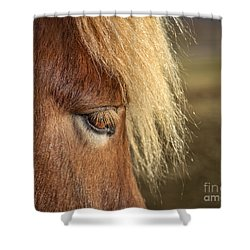 Be A Light To Yourself Shower Curtain by Evelina Kremsdorf