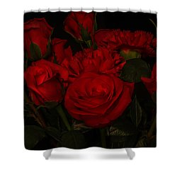 Be Still My Beating Heart Shower Curtain
