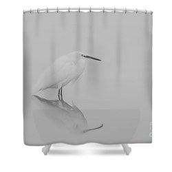 Shower Curtain featuring the photograph Be Still by Ruth Jolly