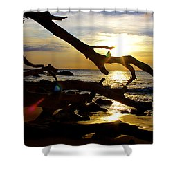 Beach 69 Hawaii At Sunset Shower Curtain by Venetia Featherstone-Witty