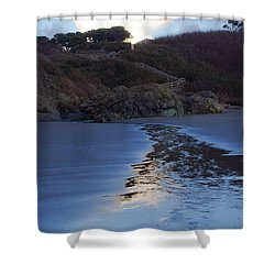 Beach Access Shower Curtain by Adria Trail