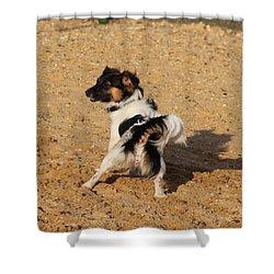 Beach Dog Pose Shower Curtain