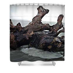 Beach Driftwood In Color Shower Curtain