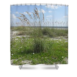 Beach Flowers And Oats 2 Shower Curtain