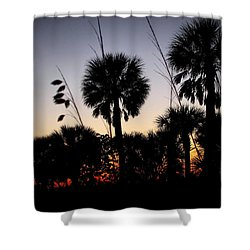 Beach Foliage At Sunset Shower Curtain by Phil Penne