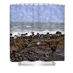 Beach Goers Bgwc Shower Curtain