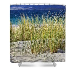 Shower Curtain featuring the photograph Beach Gras by Juergen Klust