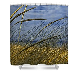 Beach Grass On A Sand Dune At Glen Arbor Michigan Shower Curtain