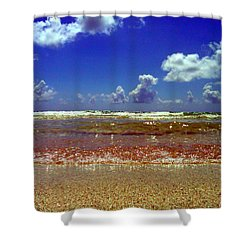 Beach Shower Curtain by J Anthony