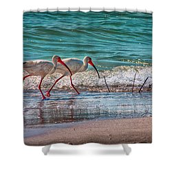 Beach Jogging In Twos Shower Curtain