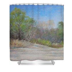 Beach  Shower Curtain by Nancy Stutes